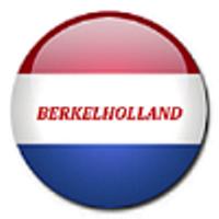 Logo Berkel Holland Snijmachines & Onderdelen